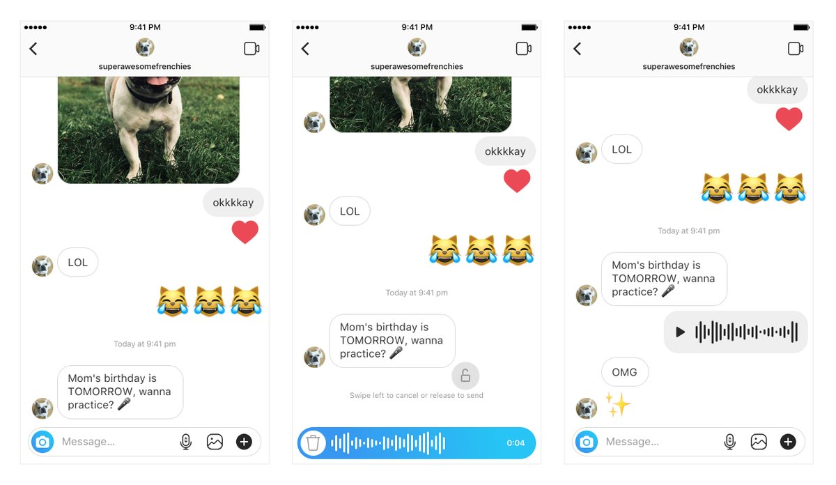 IG Voice Messaging & Facebook Search Ads   Social Factor